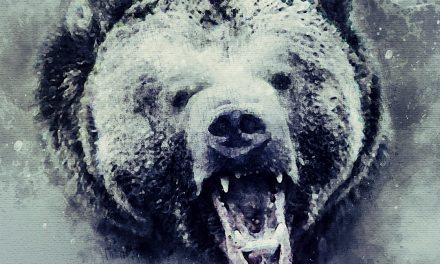 The Last Grizzly