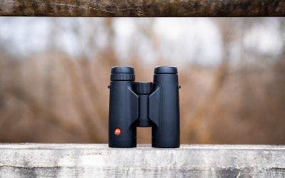 Leica 10×42 Trinovid HD Review. Buy them.