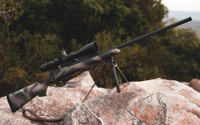 In Africa with the Bergara Highlander