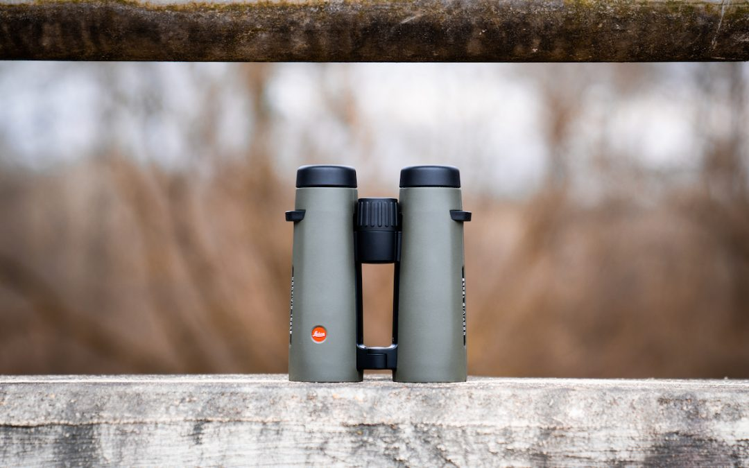 Leica Noctivid 10×42 Review