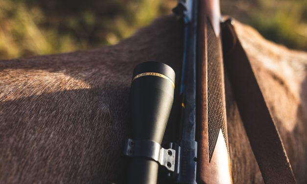 The New 2021 Leupold VX-3HD Review